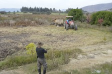 Getting the terrain ready for building / Preparando el terreno con la rastra