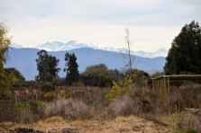 View of the Andes to the east of our plot / Vista hacía la Cordillera de Los Andes al este de nuestra parcela